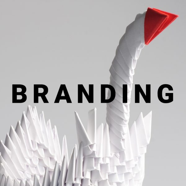 Branding cigno origami